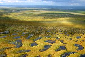 Keď sa topí permafrost, tundry pokrývajú drobné jazierka. V budúcnosti ich bude stále viac.