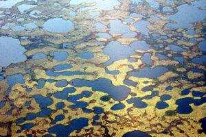 Jazierka na tundre v západnej Sibíri.