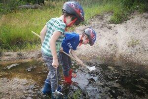 Medzi dobrovoľníkmi, ktorí hľadajú liahniská, sú aj deti.