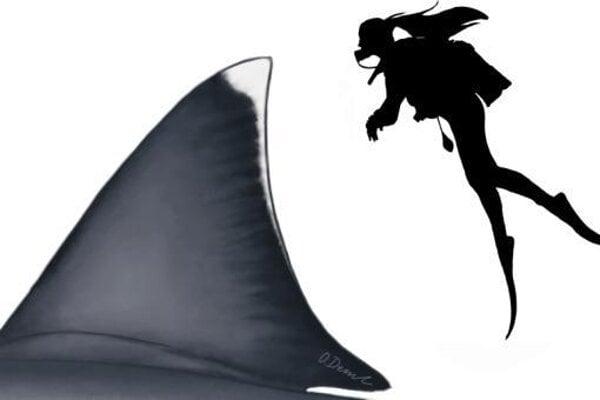 Porovnanie veľkosti chrbtovej plutvy megalodona s človekom.