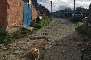 Po rozbitej ceste odmietajú jazdiť sanitky