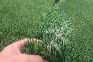 Podľa zväzu k poškodeniu umelého trávnika nemohlo dôjsť pri hre futbalu.