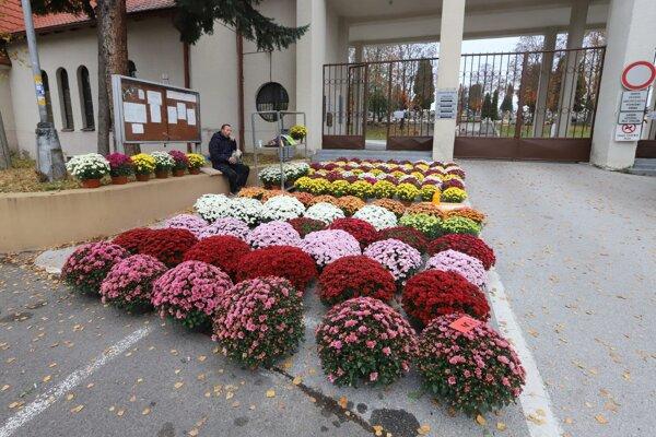 Cintorín vo Zvolene 1. 11. 2020.