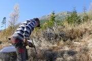 Pekné jesenné dni využili lesníci na obnovu porastov.