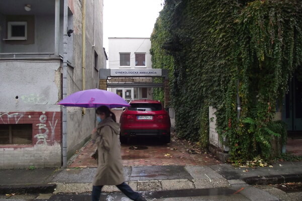 Nehnuteľnosť (vzadu) stojí v susedstve bývalého kina Palace.