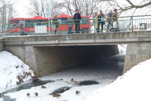 Zima v Leviciach v roku 2017. Pri Podlužianke, vedľa autobusovej stanice.