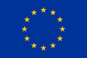 Tento projekt je spolufinancovaný Európskou úniou prostredníctvom grantu Európskeho parlamentu. Tento článok odráža výlučne názory autorov a Európsky parlament nenesie žiadnu zodpovednosť za použitie obsiahnutých informácií.
