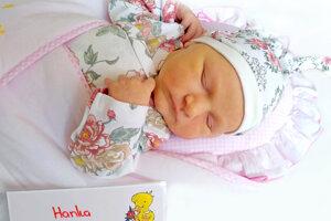Hanka Briatková z Hornej Vsi sa narodila 27.3.2021 v Bojniciach