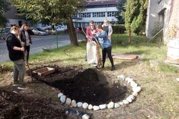 Pri ťažiskovej téme potraviny si študenti Strednej odbornej školy polytechnickej vo Svite vybudovali v škole bylinkovú špirálu.