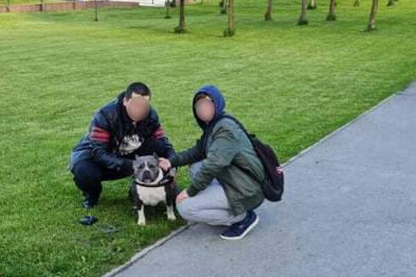 Majitelia psa po čase skrotili