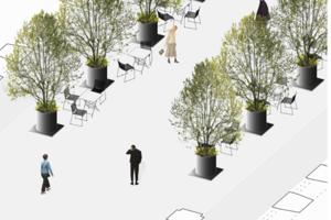 Stromy sa dajú variabilne posúvať podľa typu podujatia.