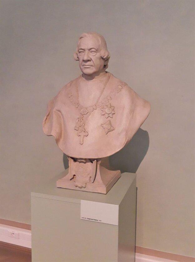 Bubicsova busta vo Východoslovenskom múzeu.