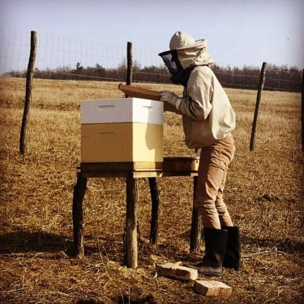 Dnes sa Sefo Raclavský venuje včelám