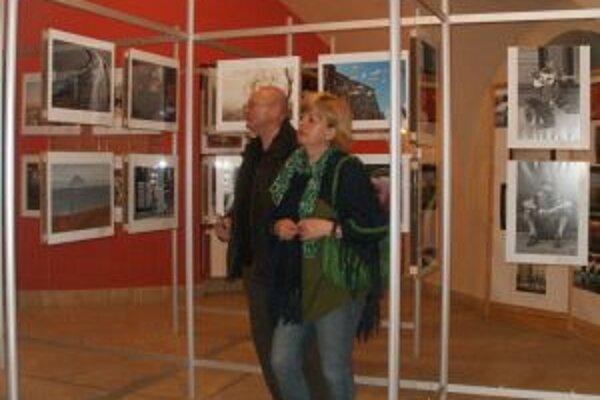 Výstava je inštalovaná do 5. apríla v Zámku v Topoľčiankach.