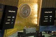 Rezolúciu podporilo 184 krajín z 193-členného Valného zhromaždenia.