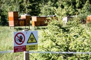 Včelnica sa nachádza približne 55 metrov od obecných bytoviek.