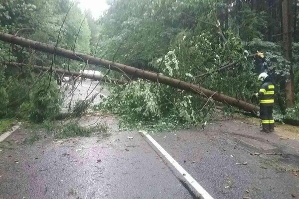 Stromy padali aj na elektrické vedenia.