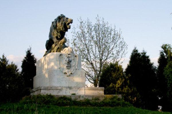 Lev vo Veľkých Vozokanoch.