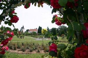 Arborétum Mlyňany.