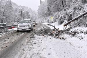 V januári tu stromy padali, teraz budú cestu odstraňovať kalamitné stromy v ochrannom pásme cesty.