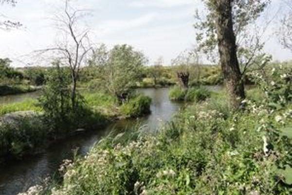 Pôvodné meandre rieky Čierna voda.