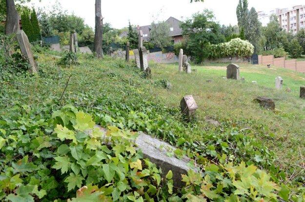 Najstarší židovský cintorín v Košiciach. Jeho skutočnú rozlohu dnes už nevidno, pozemok je z väčšej časti trávnatou plochou. Náhrobky sú viditeľné len v hornej časti.