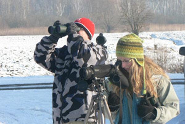 Mimovládna organizácia Ochrana dravcov na Slovensku s podporou nadácie Ekopolis robí monitoring významných druhov dravcov vo vybraných chránených územiach.