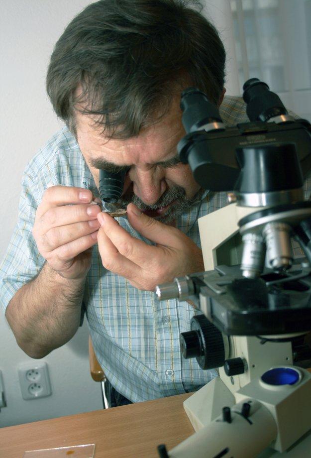 Ladislav Hagara skúma vzorky húb.