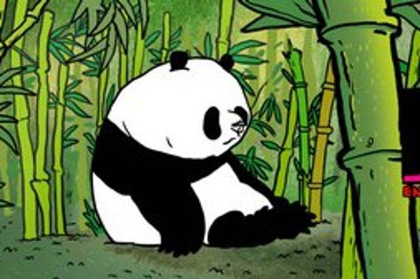 Snímky z filmu Pandy, ktorý vybrali do súťaže na festivale v Cannes.