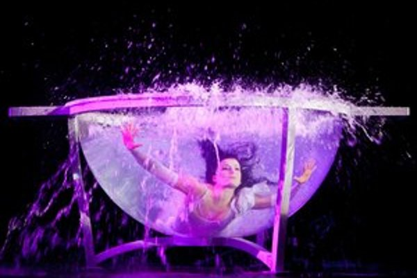 V predstavení nabitom efektnými číslami, za ktorými sú roky driny účinkuje aj Anna Natalia Filipowska - bývalá  gymnastka a poľská reprezentantka.