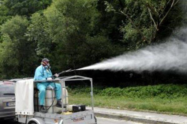 Jedinou účinnou ochranou proti škodcovi je postrek.