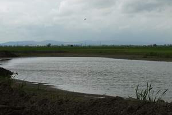Mokraď pri vodnej nádrži Sĺňava zasypávajú hlinou. Nachádza sa na súkromnom pozemku.