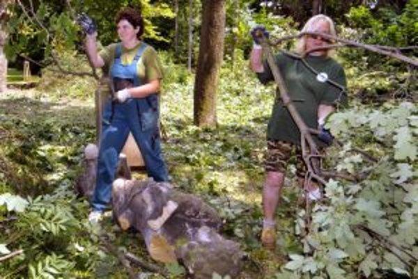 Vyčistiť priestor popri ceste a vysadiť nové stromy by chceli v Podbranči do začiatku septembra