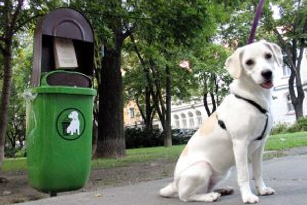 Niektorí majitelia svojich psích miláčikov na úrad nenahlásili