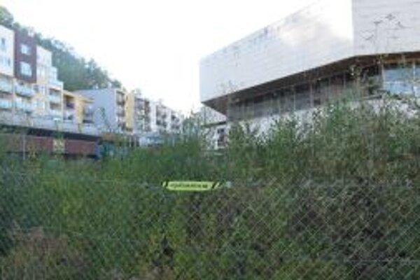 Na mieste jamy vyrastie park.