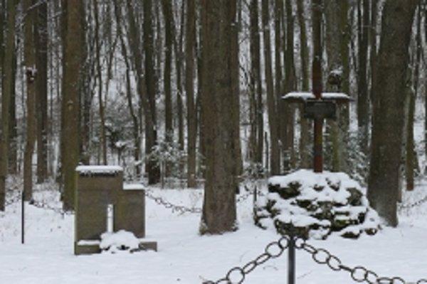 Pamätník sa nachádza  za bránami závodu v Dubnici nad Váhom.