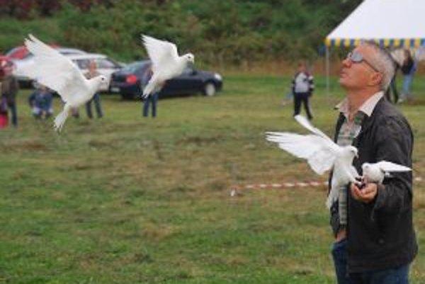 Stevan Dozet Postavil pre tristo holubov celý dom