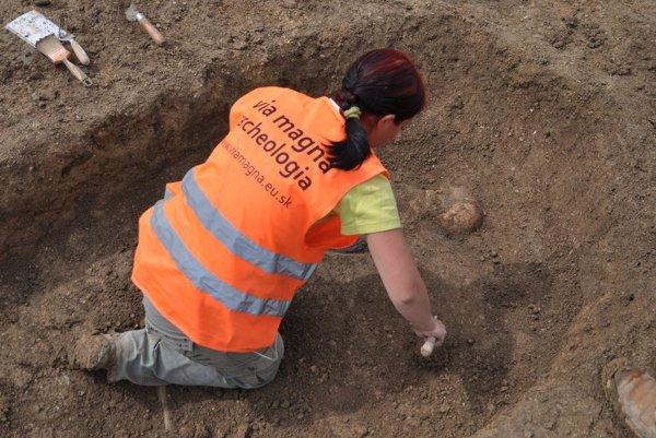 Začisťovanie hrobu bojovníka z doby bronzovej.