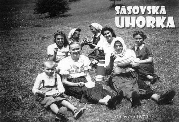 Sásová sa preslávila pestovaním uhoriek, vďaka Jánovi Kollárovi sa darí tradíciu oživiť.