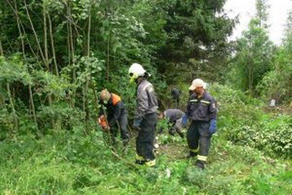 Turzovskí hasiči sa postarali o  čiastočné odlesnenie pozemku, na ktorom postaví mesto kúpalisko.