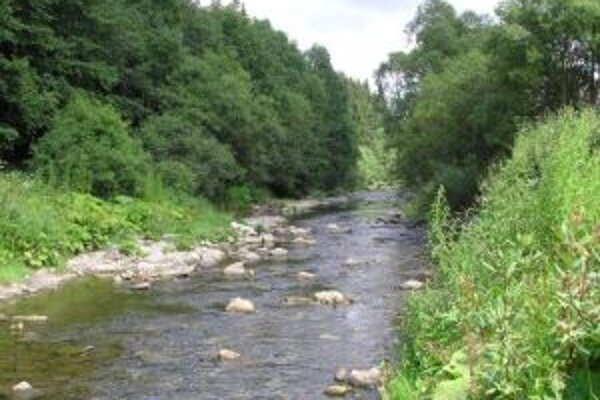 Rieka Kysuca v čase sucha.