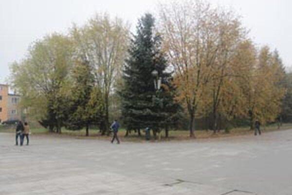 Mestá investujú do údržby mestskej zelene nemalé peniaze.
