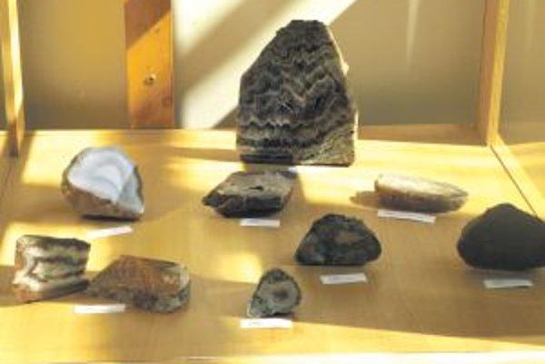 Návštevníci výstavy sa viac dozvedia o vzniku, význame a využití minerálov.