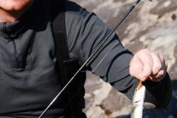 Rybári už môžu v týchto dňoch loviť pstruhy i kapry.