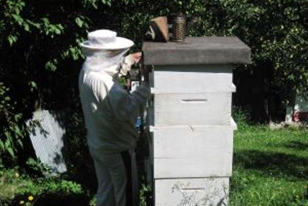 Včelári už pripravujú svoje včely na prezimovanie.