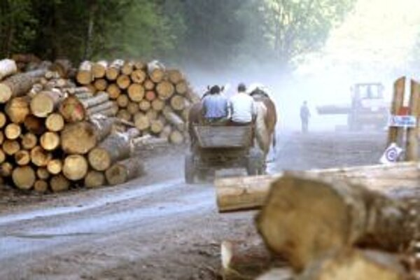 Nákladné auto naložené toxickým cypermetrínom objavil cestou z Čertovice v Nízkych Tatrách. Stálo pri ceste nad obcou Vyšná Boca.