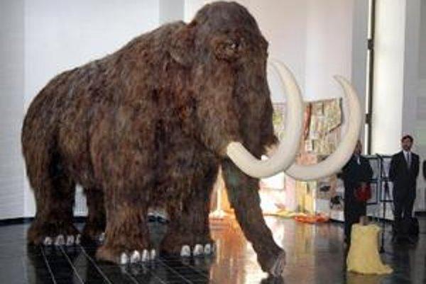 Kysucké múzeum má aj repliku samice mamuta dlhosrstého.