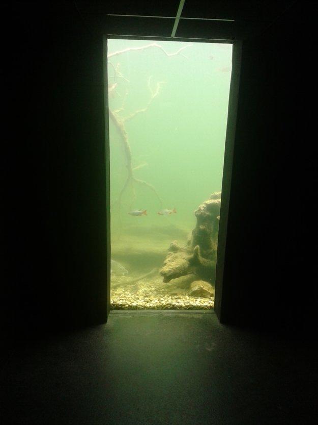 Prítmie v pozorovateľni navodzuje atmosféru kina.