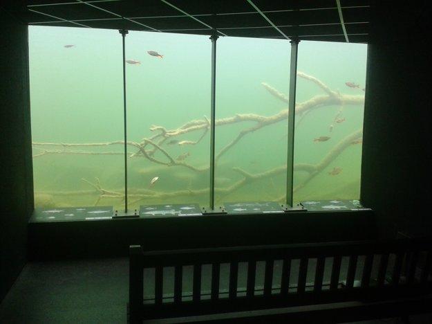 Pozorovateľňa podvodného života na zámockom ostrove v Orthe.