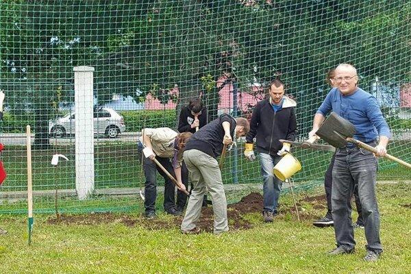 Dobrovoľníci sadili ovocné stromy.